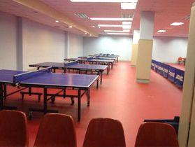 大型乒乓球台