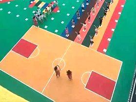幼儿园拼接地板